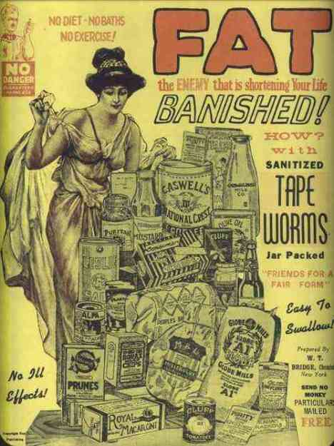 tapeworms1.jpg