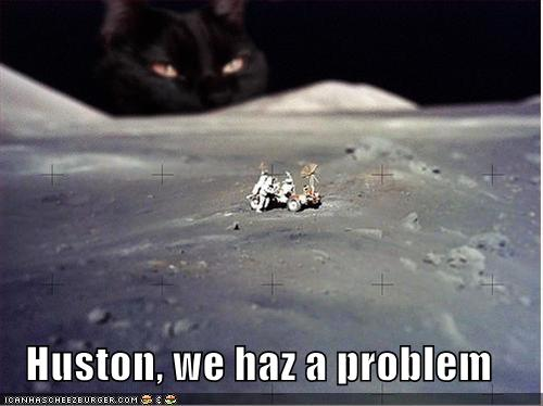 funny-pictures-cat-moon.jpg