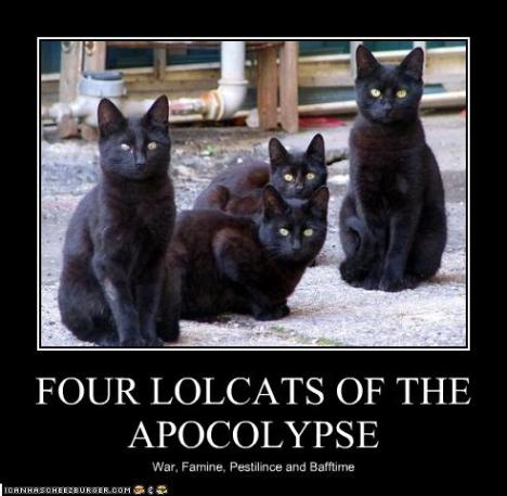 funny-pictures-four-lolcats-of-the-apocalypse