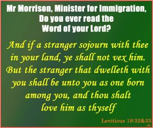 MrMorrison