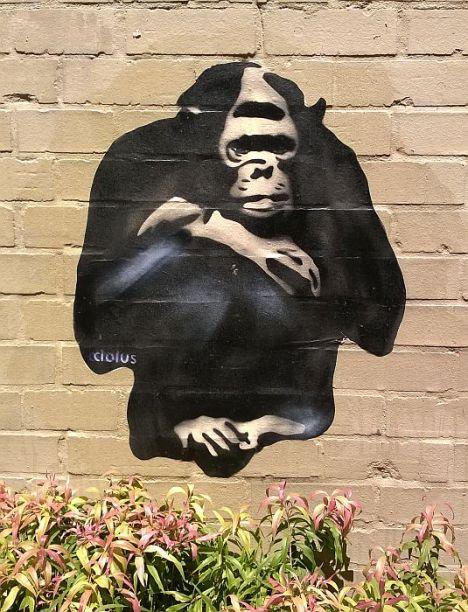 street art20