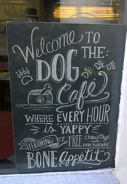 doggy cafe
